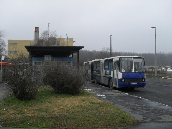 Veszprém helyijáratai