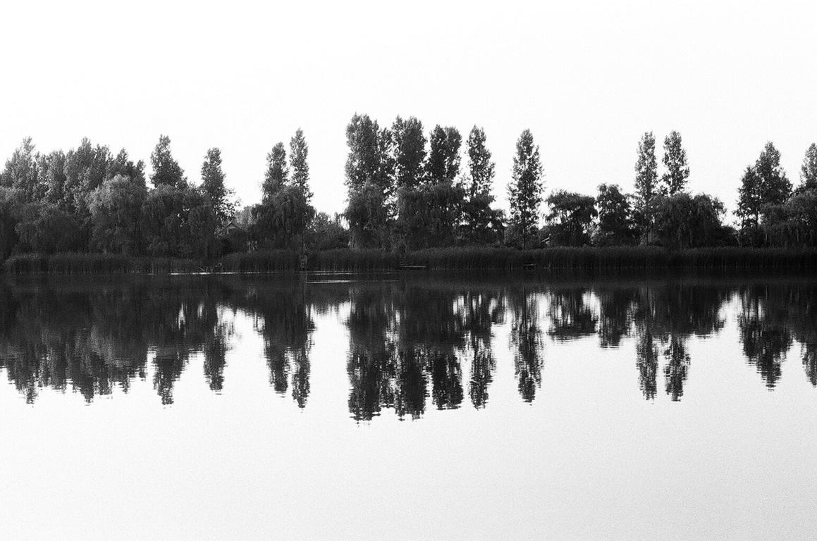 Tükörkép