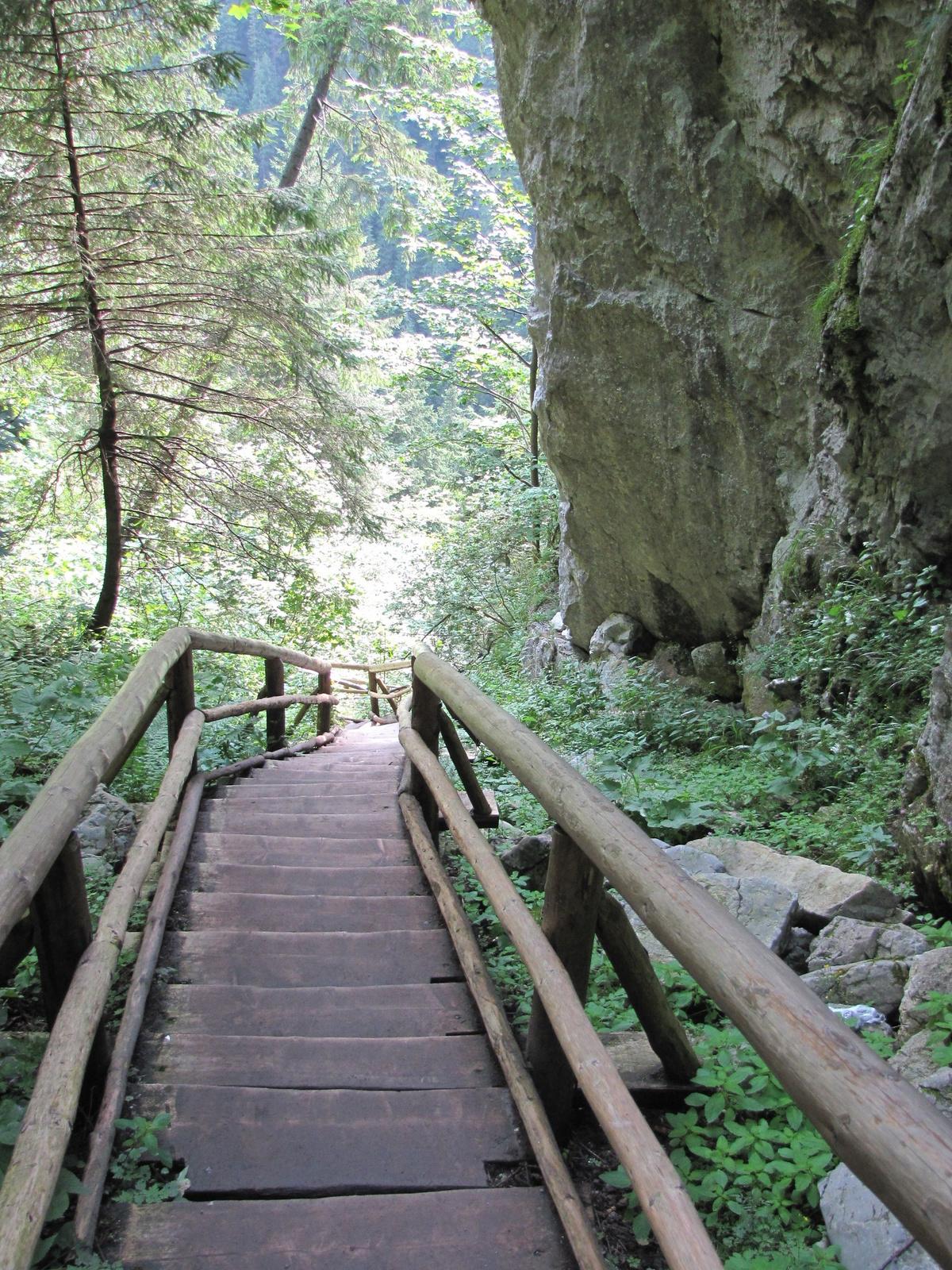Tátra Nemzeti Park, Dolina Kościeliska, SzG3